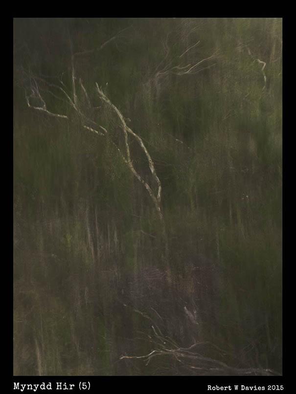 Mynydd Hir (5)